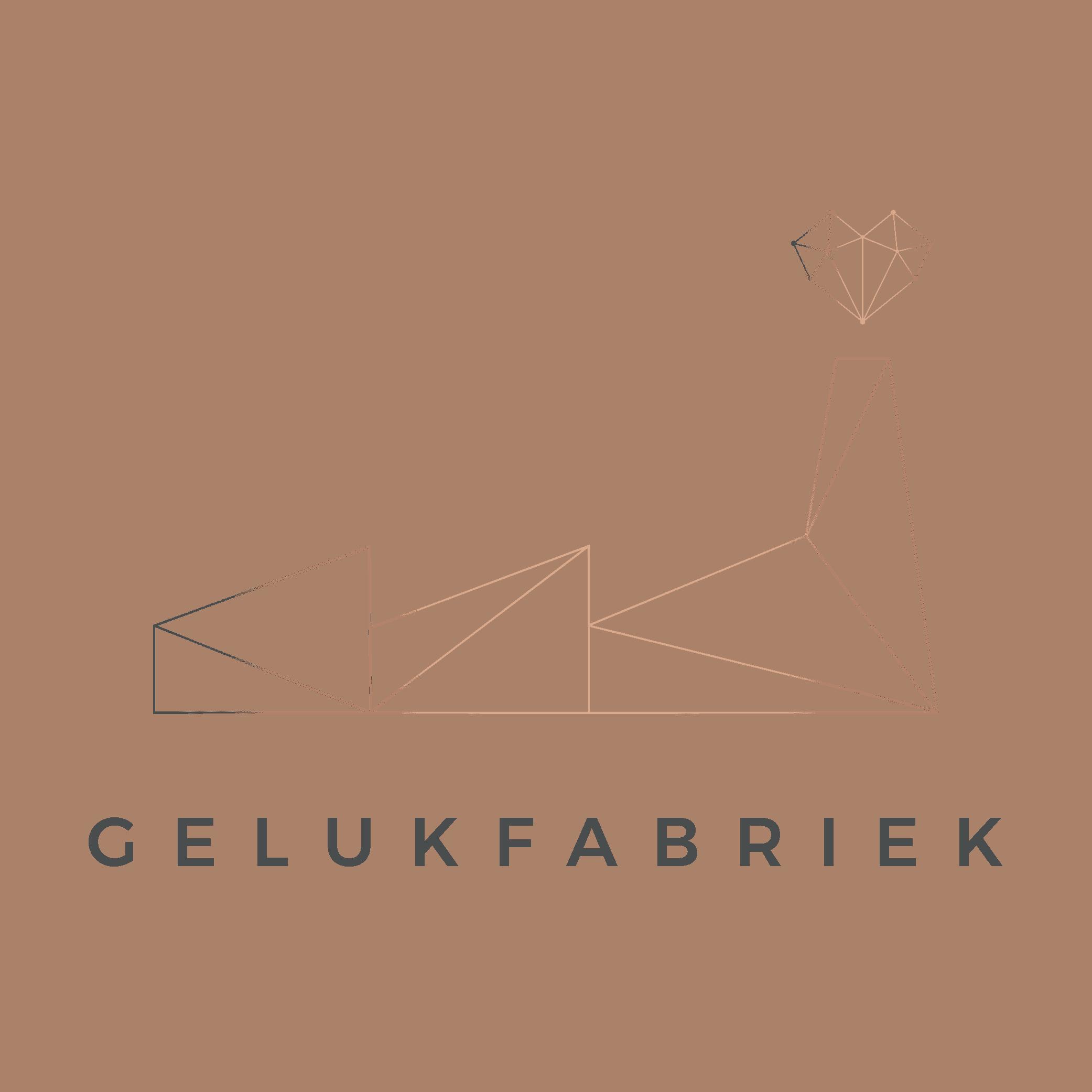 GELUKSFABRIEK_FABRIEK_DIKKERE-LIJNEN